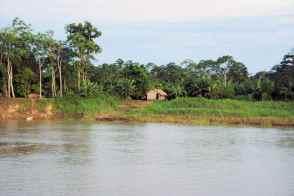 Am Rio Madeira gibt's vereinzelt Hütten, nach Manaus hin, werden es mehr