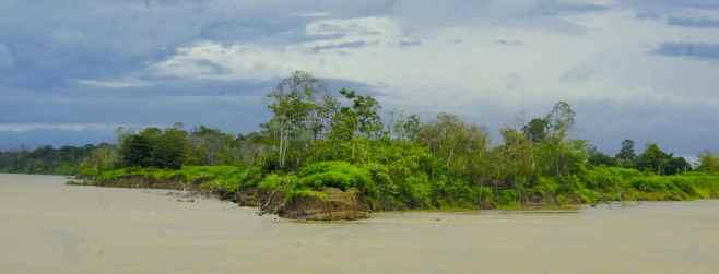 Der Fluss wird immer wieder von riesigen Inseln geteilt