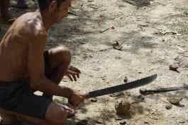 Brazilian Nut zu knacken - er schafft's, wir nicht