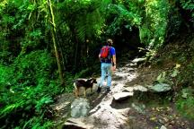 Begleiter im Valle de Cauca
