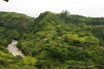 Kleine Farmen, die in ihren Parzellen vor allem Kaffee anbauen.