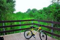 Das Hoellen-Fahrrad