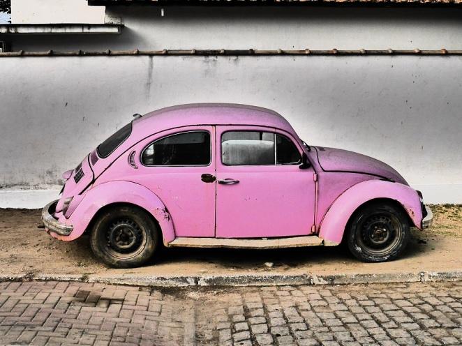 Käfer klein rosa